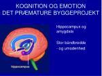 kognition og emotion det pr mature byggeprojekt