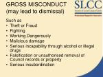 gross misconduct may lead to dismissal