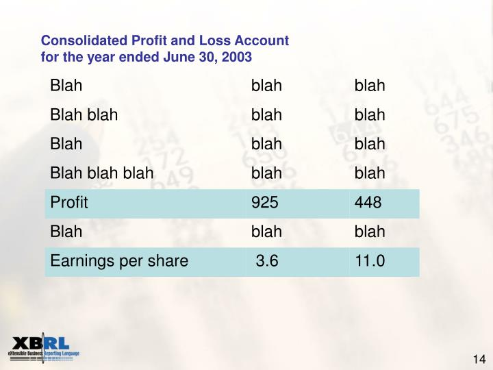 Consolidated Profit and Loss Account