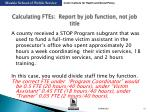 calculating ftes report by job function not job title