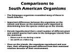 comparisons to south american organisms