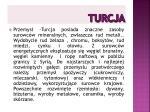 turcja9
