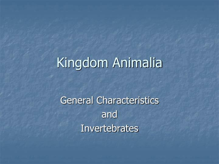 kingdom animalia n.