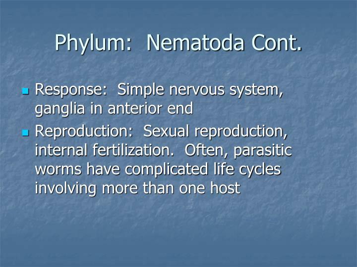 Phylum:  Nematoda Cont.