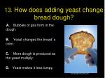 13 how does adding yeast change bread dough