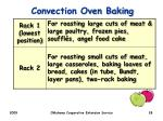 convection oven baking1