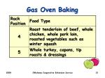 gas oven baking2
