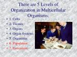 there are 5 levels of organization in multicellular organisms