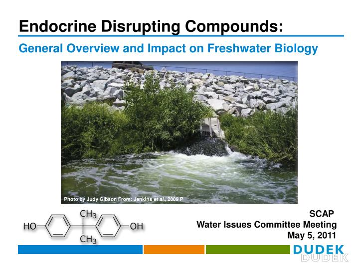 endocrine disrupting compounds n.