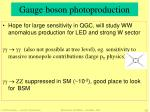 gauge boson photoproduction