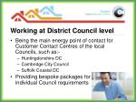 working at district council level