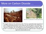 more on carbon dioxide