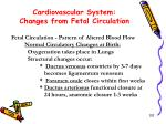 cardiovascular system changes from fetal circulation