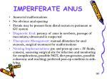 imperferate anus