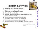 toddler nutrition