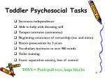 toddler psychosocial tasks