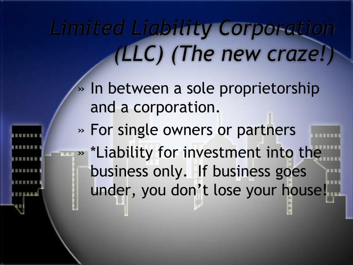 Limited Liability Corporation (LLC) (The new craze!)
