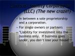 limited liability corporation llc the new craze