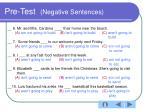 pre test negative sentences