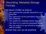 describing metadata storage formats