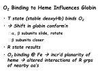 o 2 binding to heme influences globin