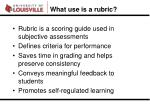 what use is a rubric