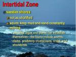 intertidal zone2