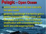 pelagic open ocean