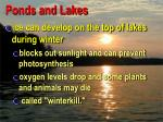 ponds and lakes4