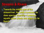 streams rivers2