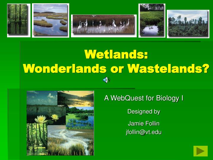 wetlands wonderlands or wastelands n.