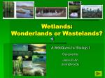 wetlands wonderlands or wastelands