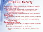 bridges security