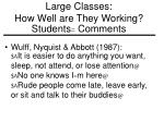 large classes how well are they working students comments