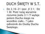 duch wi t y w s t1