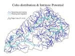 coho distribution intrinsic potential