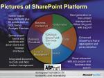 pictures of sharepoint platform