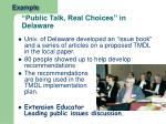 public talk real choices in delaware