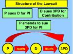 structure of the lawsuit