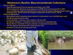 oklahoma s benthic macroinvertebrate collections