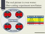 the real picture is even worse fiber cutting experiment now future