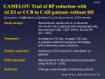 camelot trial of bp reduction with acei or ccb in cad patients without hf