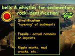 bells whistles for sedimentary rock identification