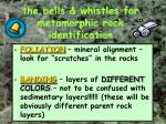 the bells whistles for metamorphic rock identification