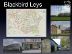 blackbird leys