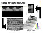spatio temporal features