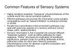 common features of sensory systems
