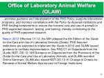 office of laboratory animal welfare olaw