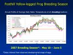 foothill yellow legged frog breeding season