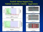 foothill yellow legged frog habitat suitability criteria eggmasses